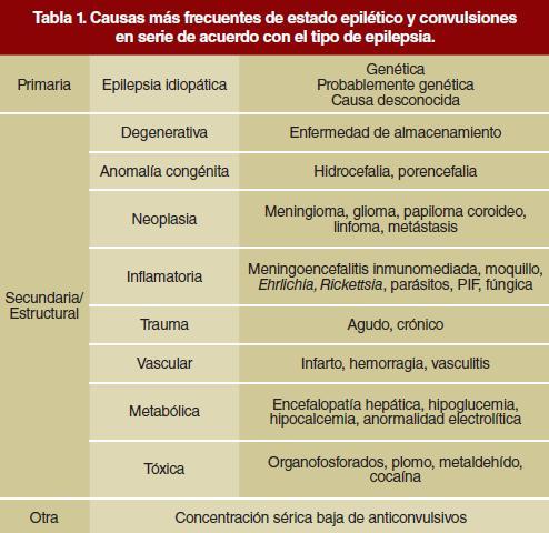 estado epiléptico tratamiento buenas pautas para la diabetes