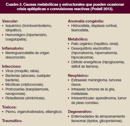 Causas de convulsiones