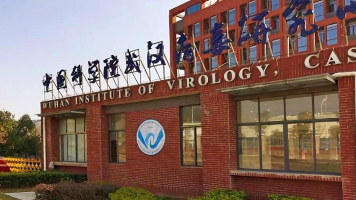 """La misión de la OMS que busca el origen del coronavirus en China va  """"realmente bien""""   PortalVeterinaria"""