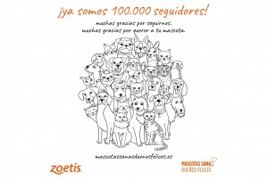 """f412ee225 """"Mascotas sanas, dueños felices"""", supera los 100.000 seguidores"""